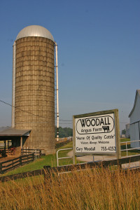 Woodall sign III